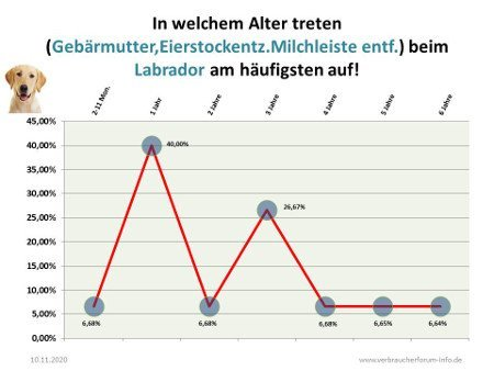 Statistik über Probleme der Geschlechtsorgane beim Labrador