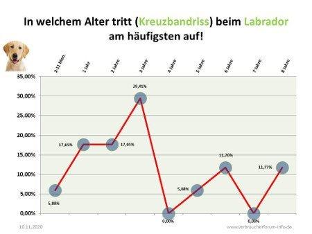 Statistik zum Kreuzbandriss beim Labrador