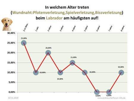 Statistik Wundnaht beim Labrador